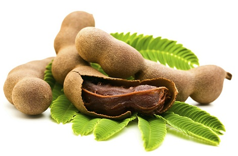Fresh Tamarind with leaves